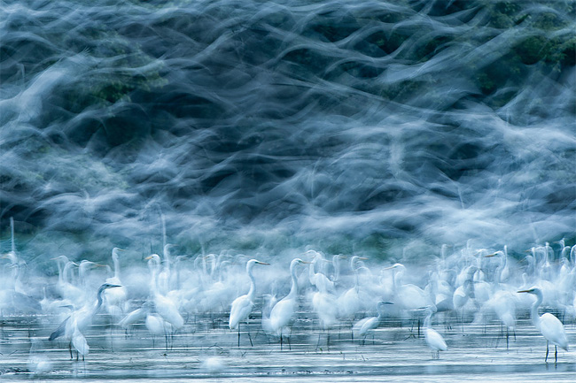 National Geographic Photo Contest 2013 07