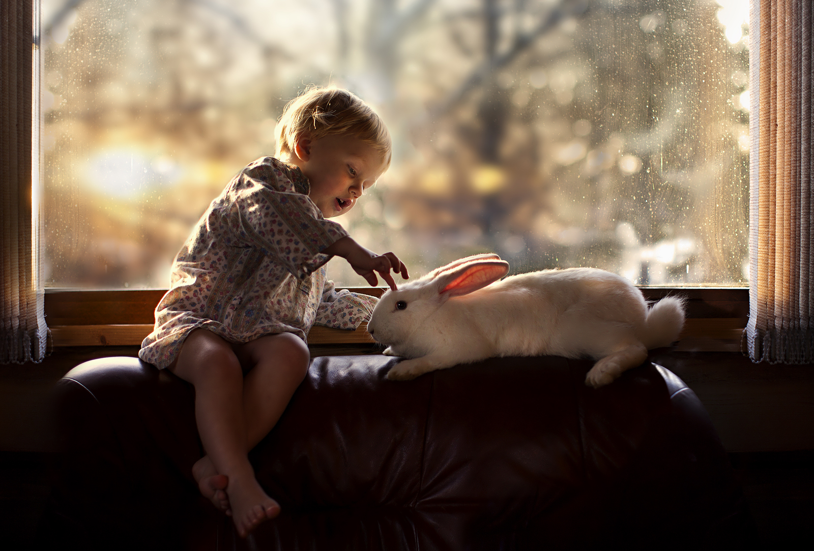 Photo Elena Shumilova - enfant lapin