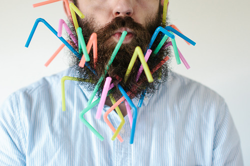 Will it Beard - © Pierce et Stacy Thiot