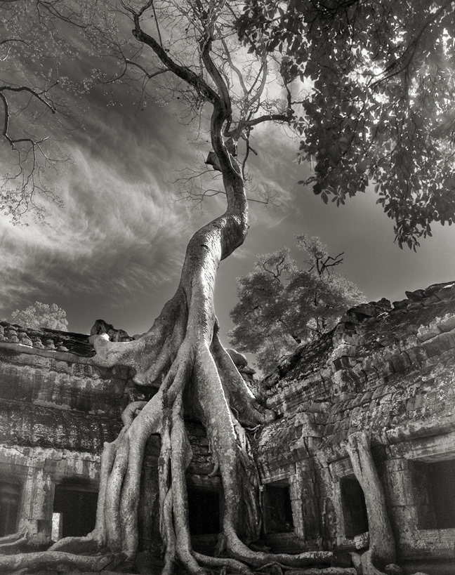 Rilke's Bayon - Photo : Beth Moon