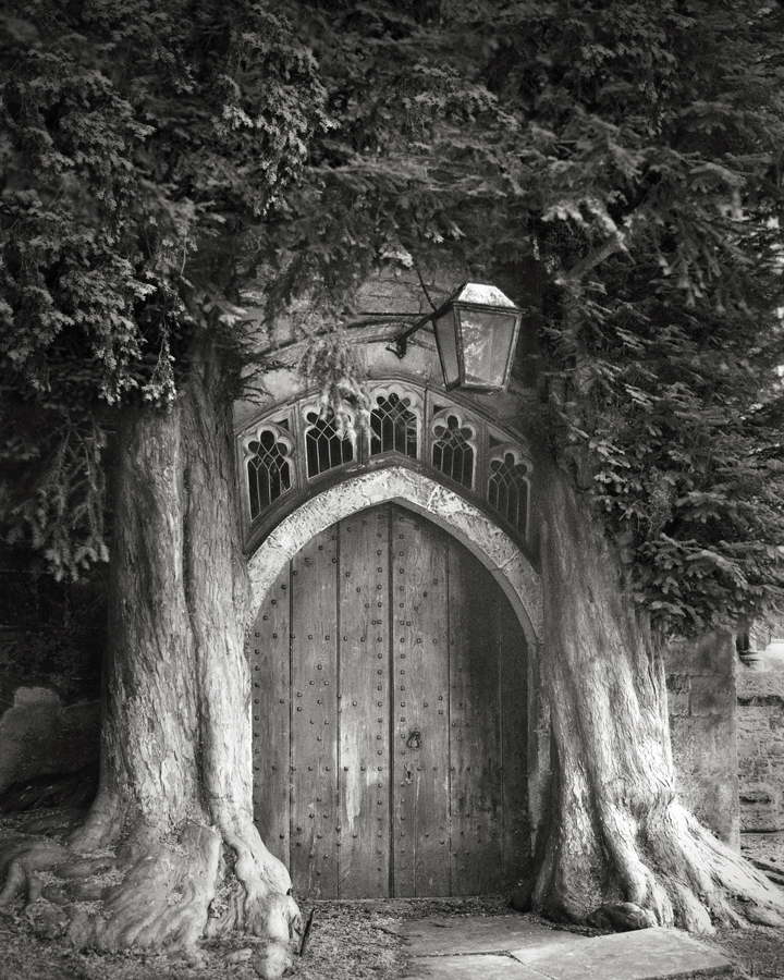 Sentinels of St. Edwards - Photo : Beth Moon