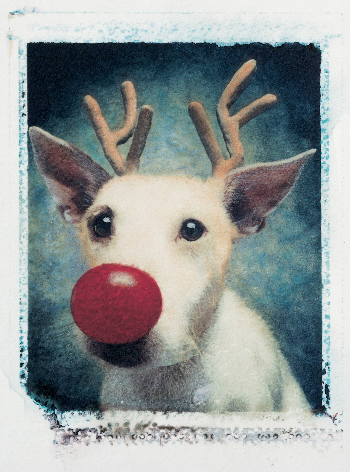 Rudolf, 1990 Photo : Peter Thorpe