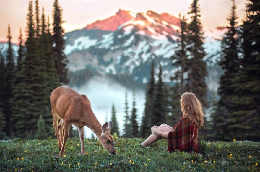 Creatures of the Meadow - Photo : Elizabeth Gadd
