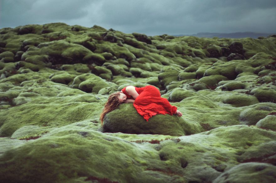 Graceful Divergence - Photo : Elizabeth Gadd