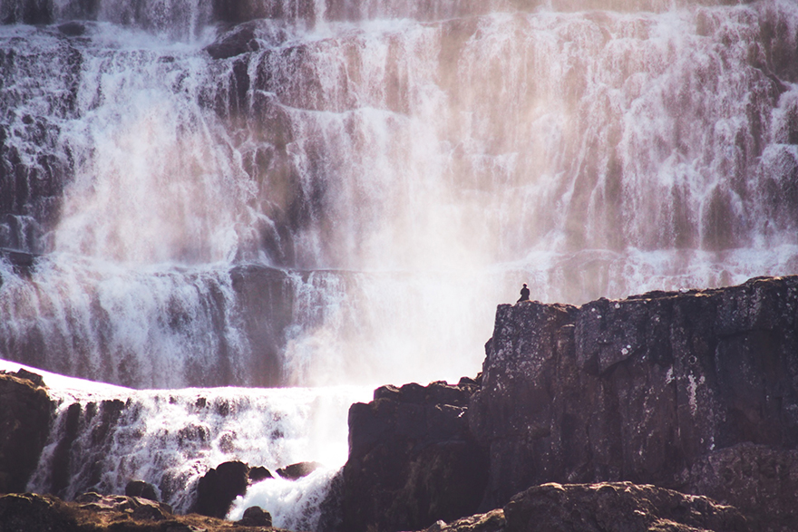 Mighty Cascades - Photo : Elizabeth Gadd