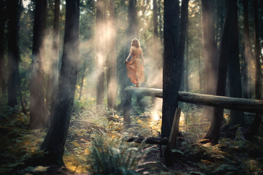 Step Forth - Photo : Elizabeth Gadd