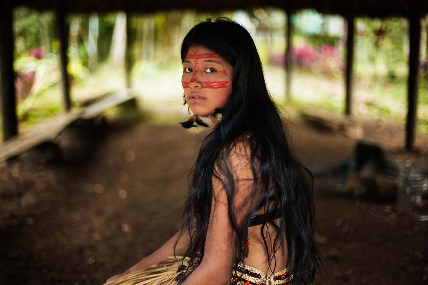 Amazon Rainforest - Photo : Mihaela Noroc