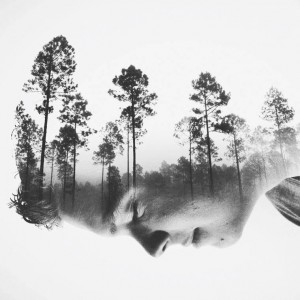 Photo : Brandon Kidwell