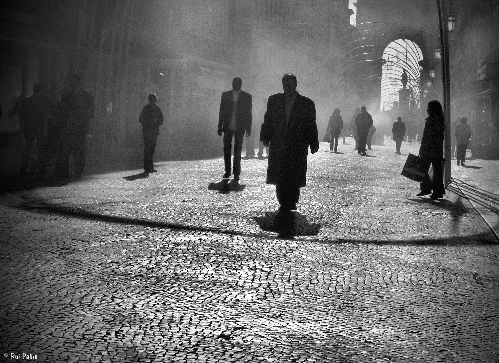 Photo: Rui Palha