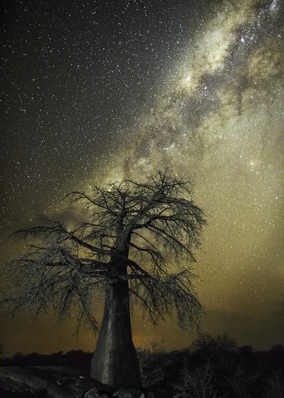 Aquila Photo : Beth Moon