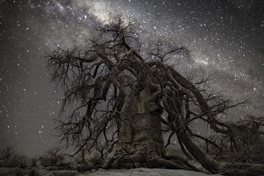 Hercules Photo : Beth Moon