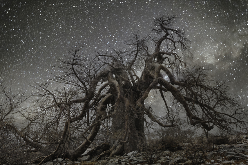 Hydra Photo : Beth Moon