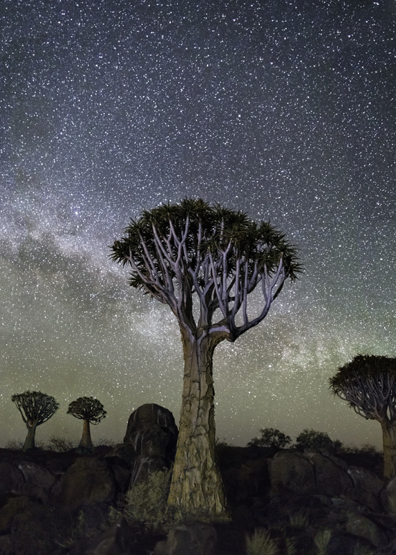 Izar Photo : Beth Moon