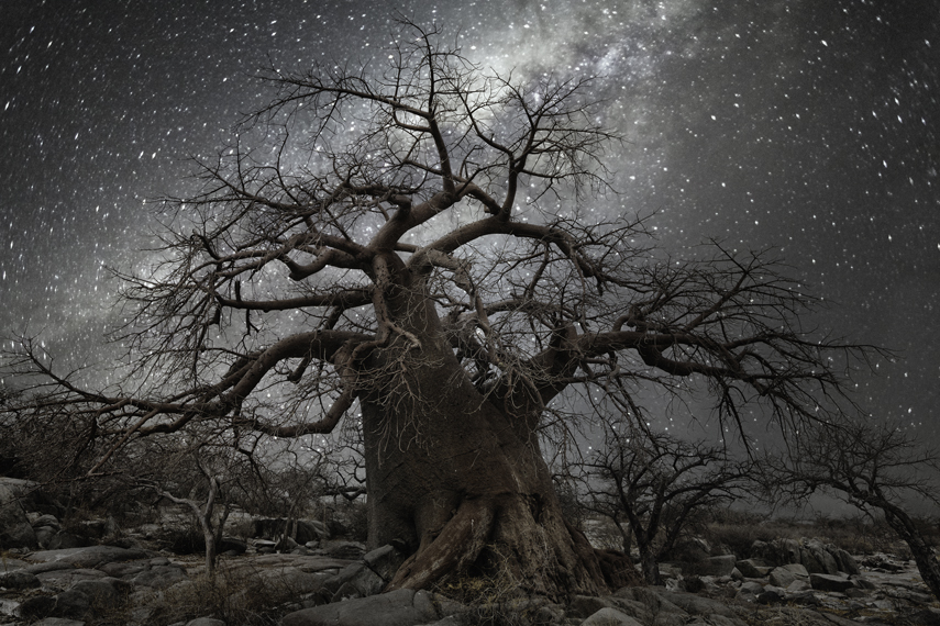 Octans Photo : Beth Moon