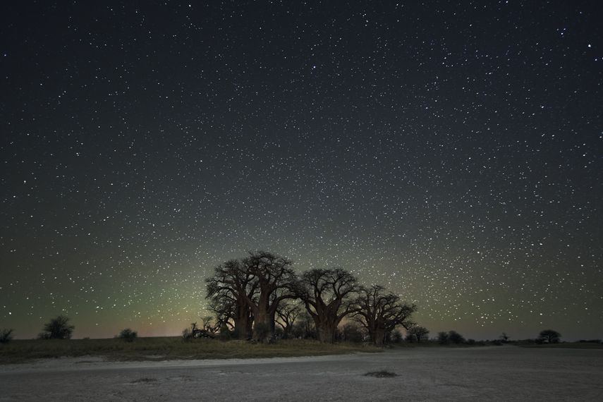 Orion Photo : Beth Moon