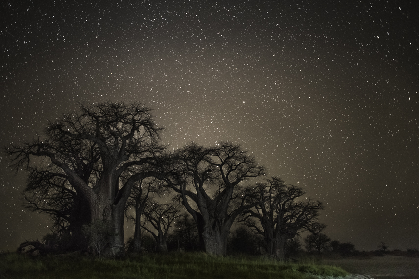 Tucana Photo : Beth Moon