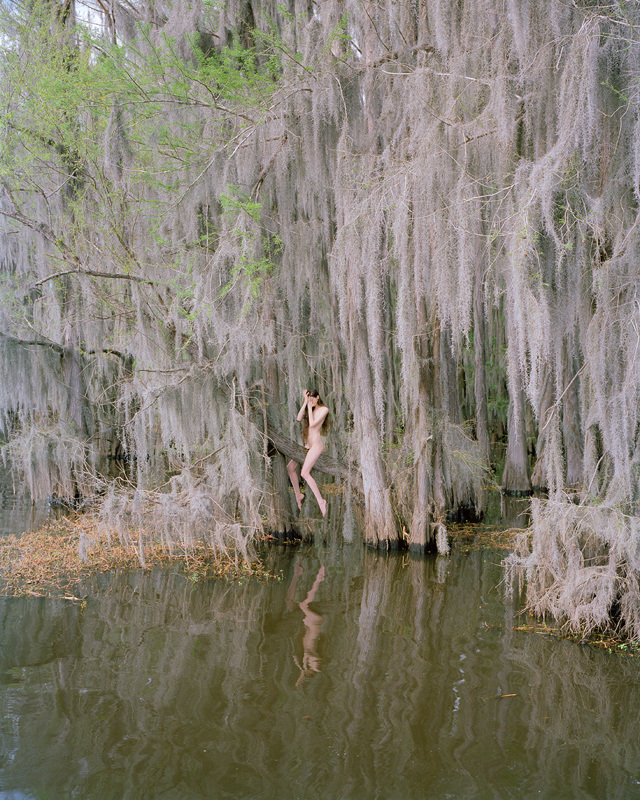 Photo : Synchrodogs (2015) Supernatural