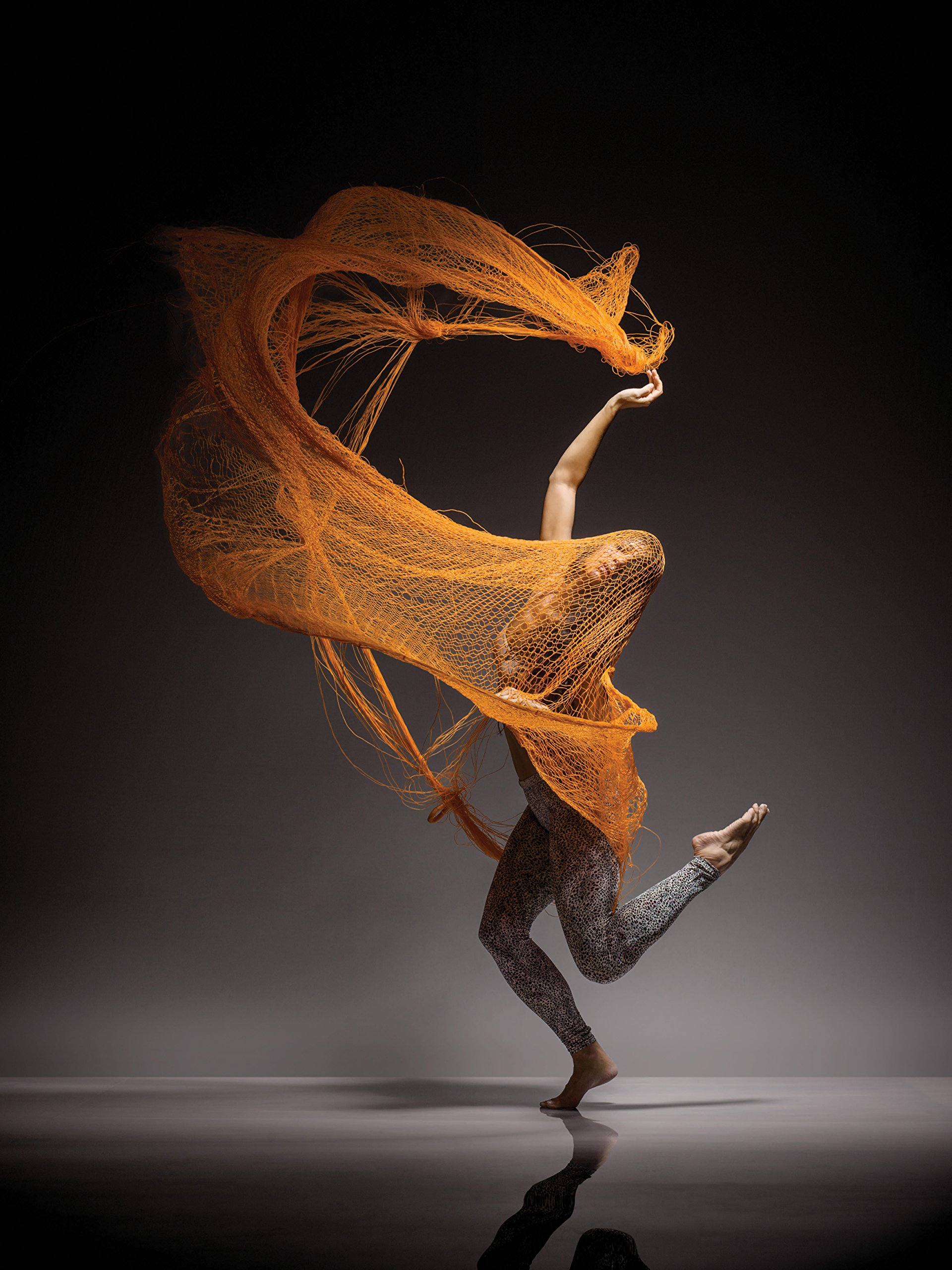 grainedephotographe-loisgreenfield