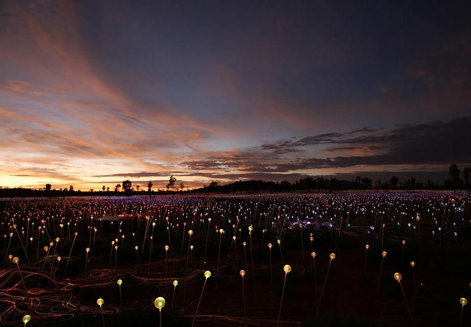 """Field of Light"" à Uluru, Australie, par Bruce Munro (2016)"
