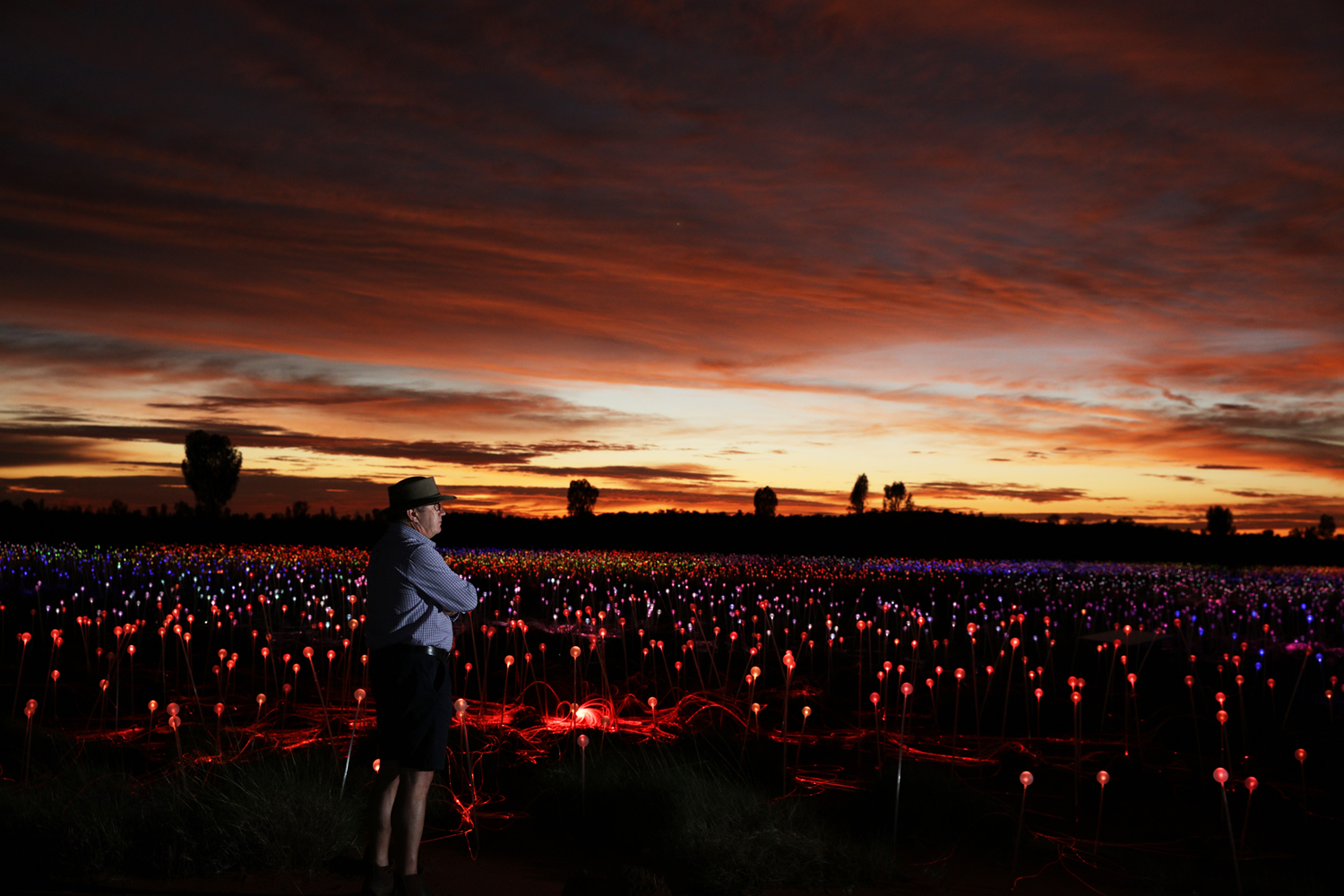 """Field of Light,"" à Uluru, Australie, par Bruce Munro (2016). Photo : Mark Pickthall"