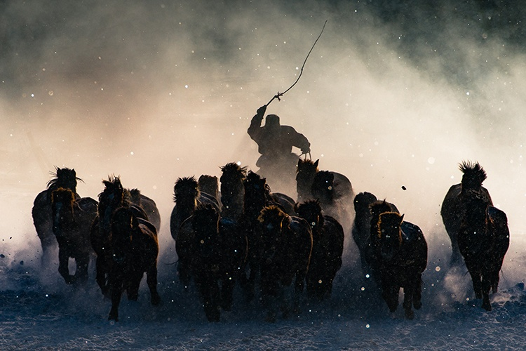 winter-horseman-anthony-lau-mongolia