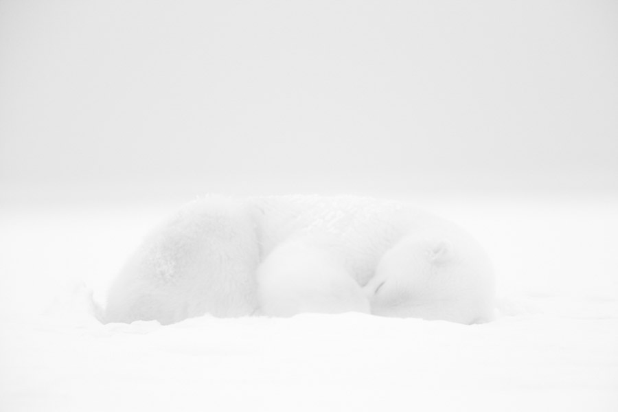 Photo : White Dream - Kyriakos Kaziras