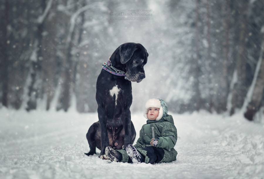 Photo : Andy Seliverstoff / Little Kids with their Big Dogs