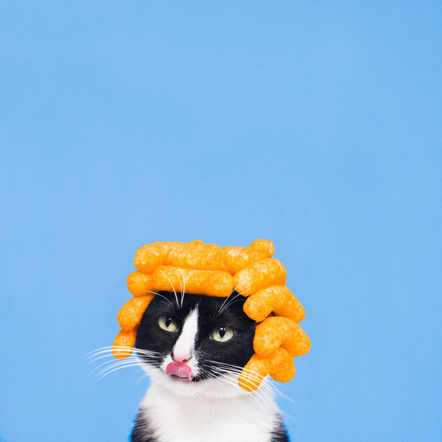 Photo : Princess Cheeto - Hugo Martinez