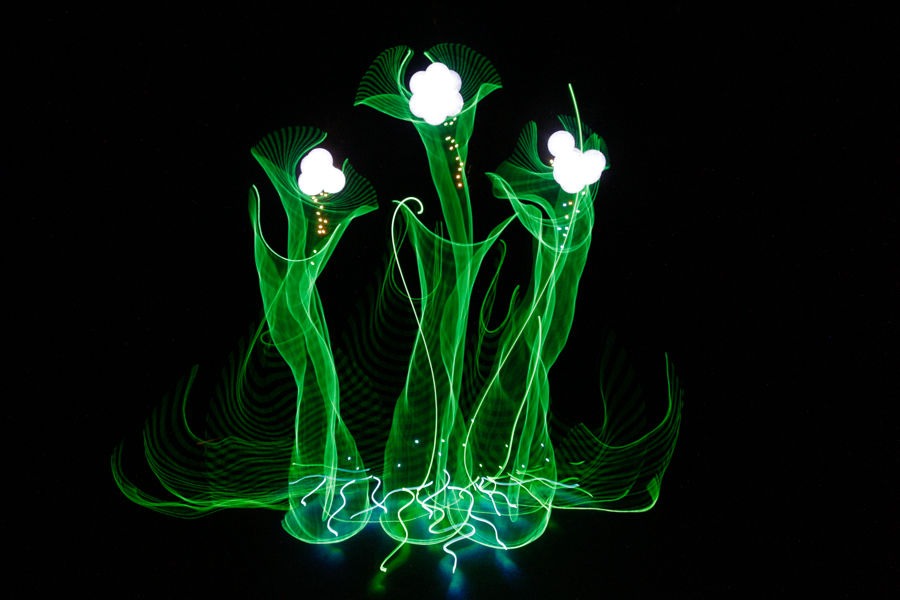 Photo : Hannu Huhtamo / Light Art Photography
