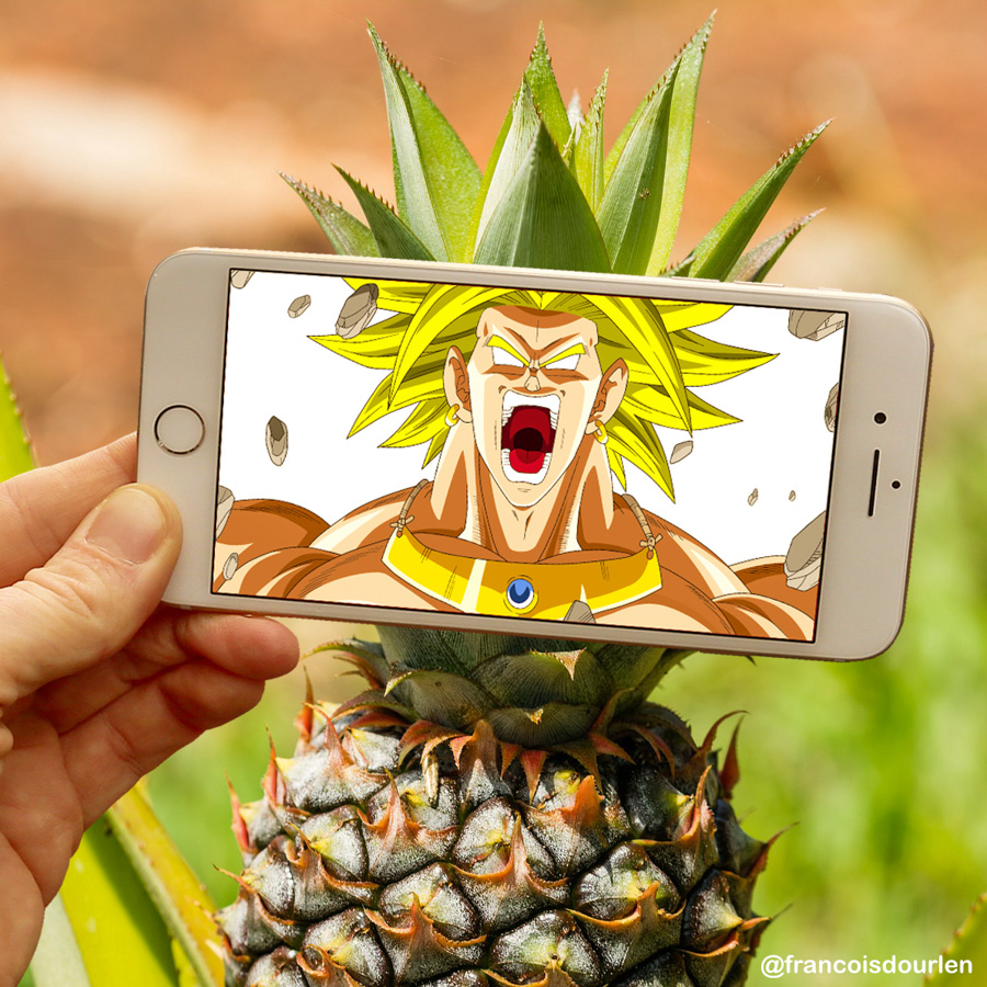 Photo : François Dourlen / Les photos de françois / Ananas / Dragon Ball Z