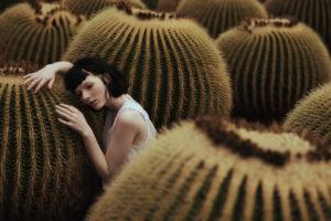 Photo - Alessio Albi, cactus