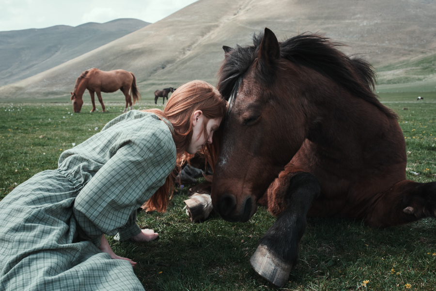 Photo - Alessio Albi, cheval
