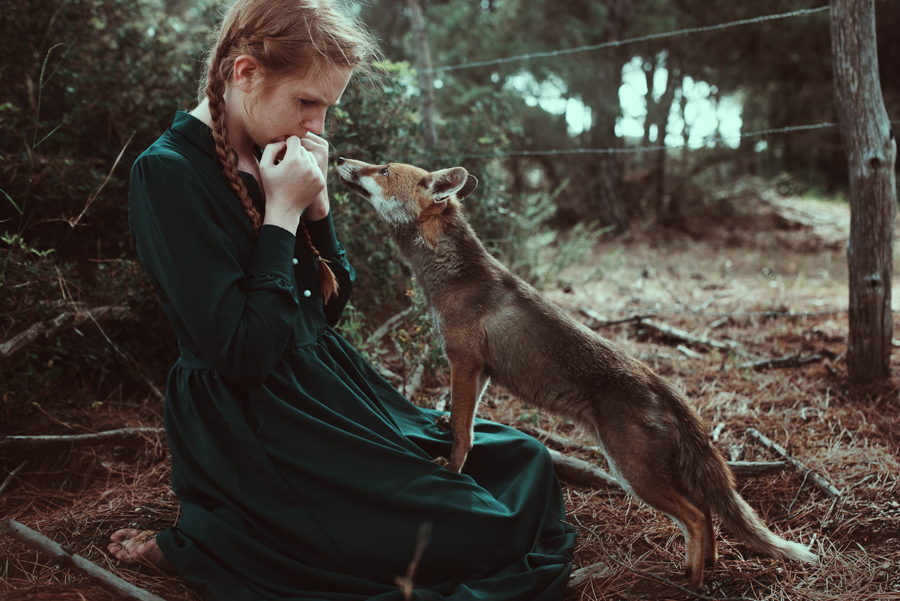 Photo - Alessio Albi renard