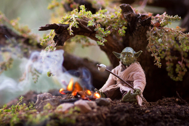 Photo - Mitchel Wu, Maître Yoda (Star Wars)
