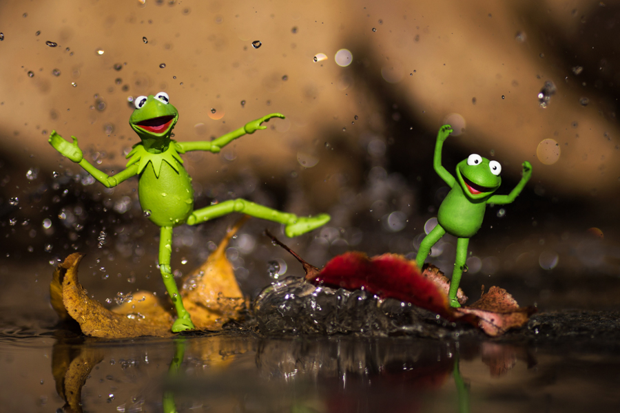 Photo - Mitchel Wu, Kermit la grenouille (Muppet Show)