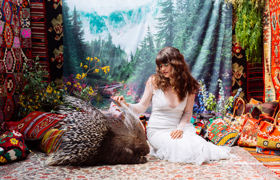 Photo - Deanastacia / Natasha Wilson, Where the Wild Things Are, Porc-épic à crête