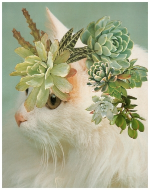 Photomontage - Stephen Eichhorn - Cats & Plants - Horns 2011