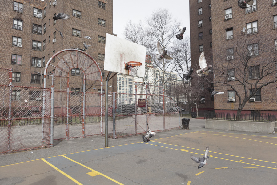 "Navy Walk, Brooklyn. Kevin Couliau""Sphère d'influence : Le basketball, ici et ailleurs"""