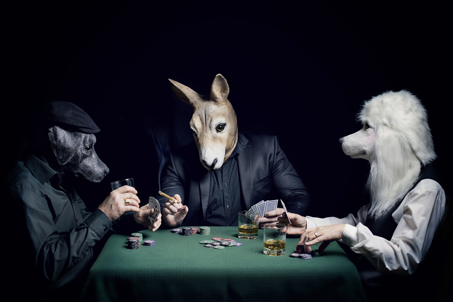 argent, poker, âne, chien, cigare, whisky, animaux, photo, photographe