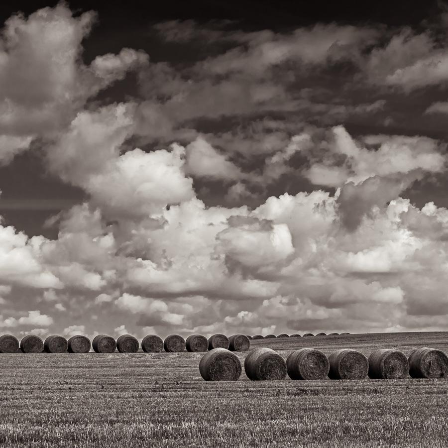 Bottes de foin dans un champ du Midwest américain avec ciel chargé de nuage, paysage monochrome
