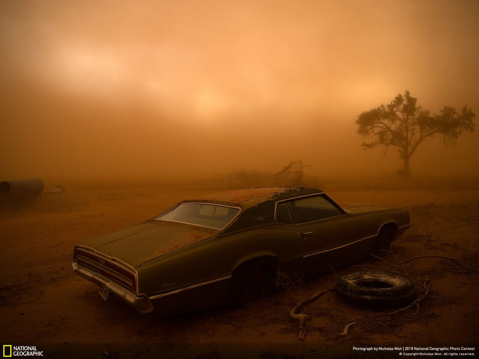 Second Prix Places National Geographic Photo Contest, Thunderbird in the Dust par Nicholas Moir