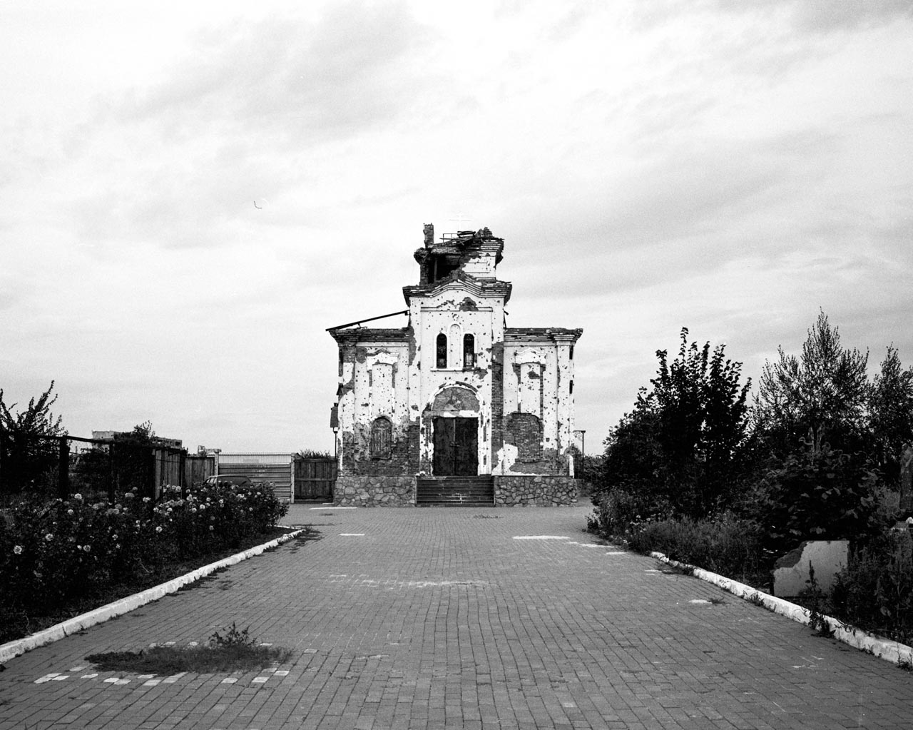 Parias ©️ Yegan Mazandarani